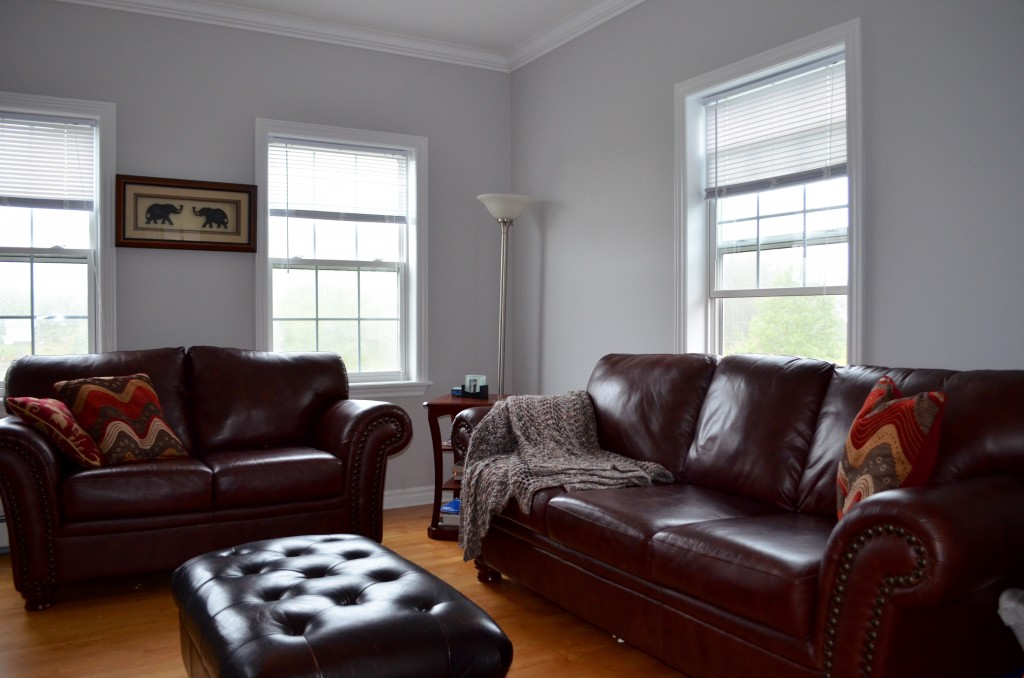 Living Room with Brown Leather Furnish